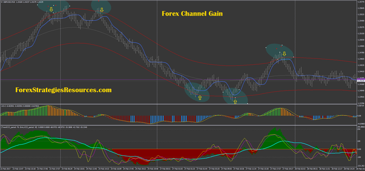 Forex Channel Gain with renko chart