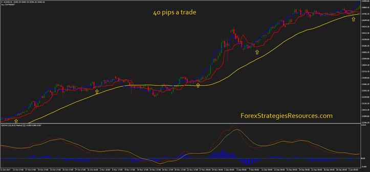 40 pips a trade