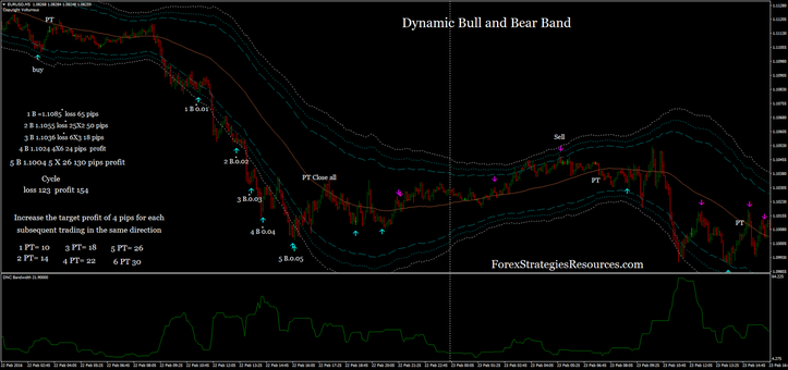 Dynamic Bull and Bear Band