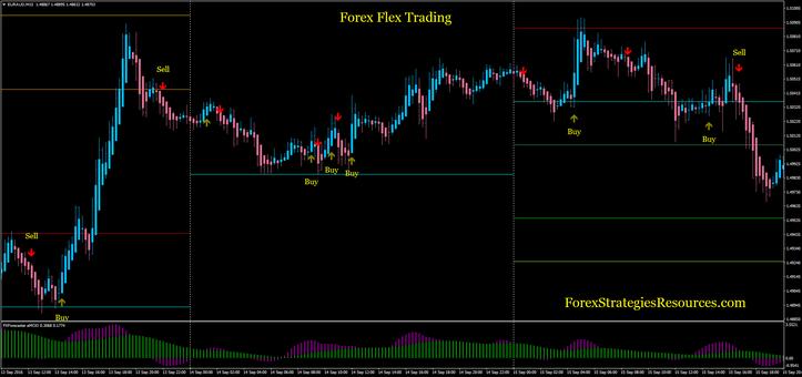 Forex Flex Trading