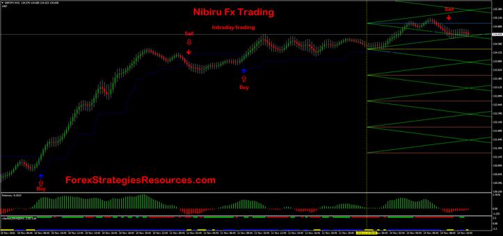 Nibiru Fx Trading