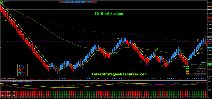FX King System with median  renko chart