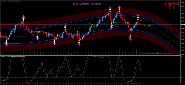 Binary Point Reversal