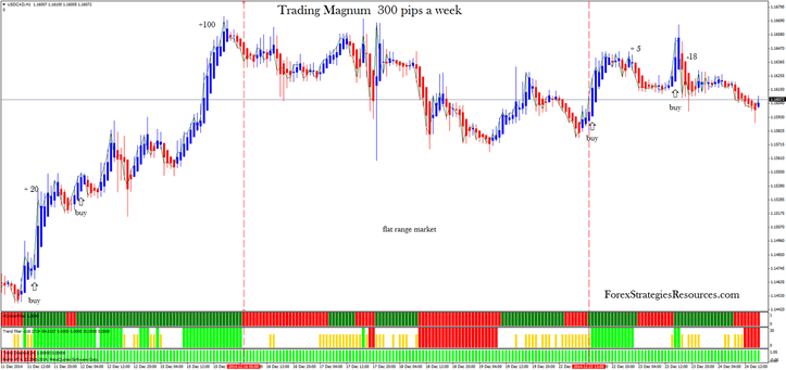 Trading Magnum  300 pips a week