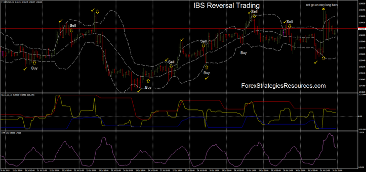 IBS Trading reversal in action.