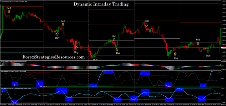Dynamic Intraday Trading