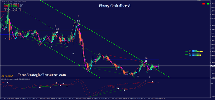 Binary Cash Filtered