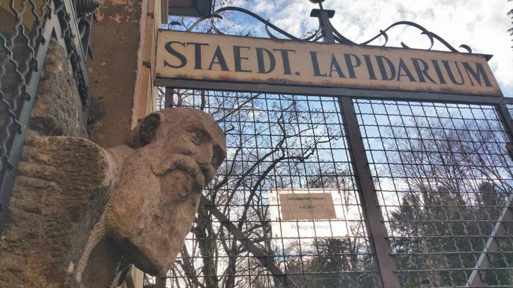 Основное собрание Лапидариума (музея древних камней) находится в Новом замке, а выставка на свежем воздухе открыта с мая по октябрь