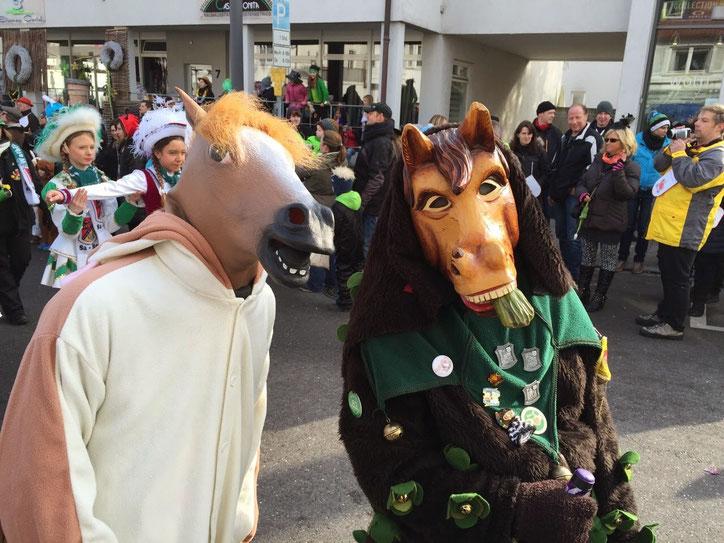 """А вот и мой """"брат"""" в толпе. Тоже конь. Я слева, если что"""