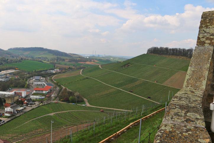 С высоты замка открывается невероятная панорама на виноградники и долины рек