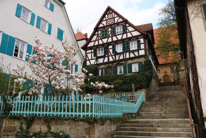 Крутая лестница ведёт через красивейшие сады бюргеров на самый верх