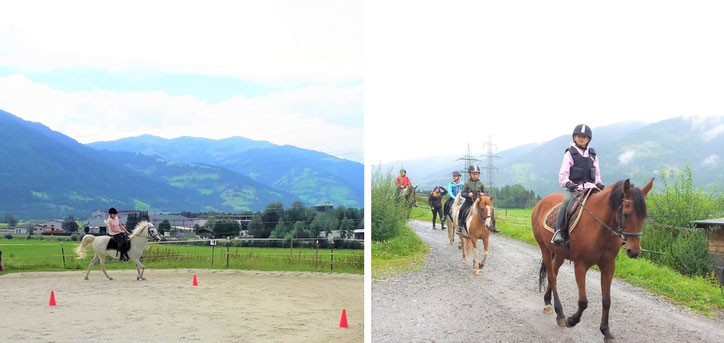 Horseback Riding and German and English Langauge Lessons in Tyrol Austria