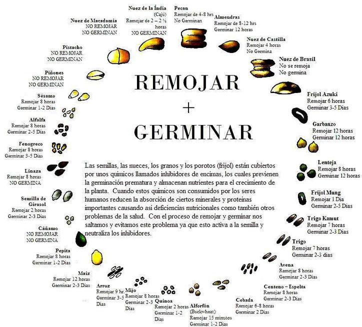 Recomendados Dietistas Nutricionistas Malaga