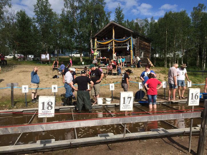 Goldwaschwettbewerb 2014