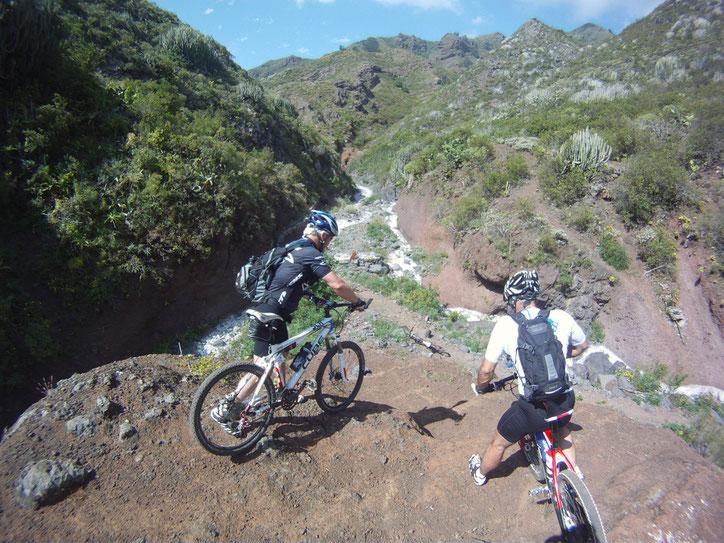 MTB -Tour auf Teneriffa Natur purr mit Erlebnissfaktor