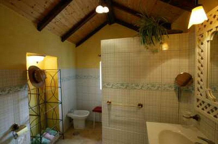 Bad des ferienhauses mit Pool auf einer romantischen Finca mit pool in Guia de Isora auf teneriffa