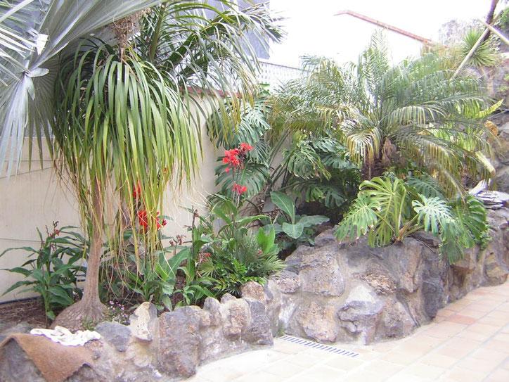 Der Eingang ähnelt einem subtropischen Garten
