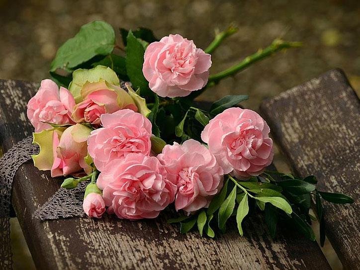 Blog: Bedingungslose Liebe Ho'oponopono