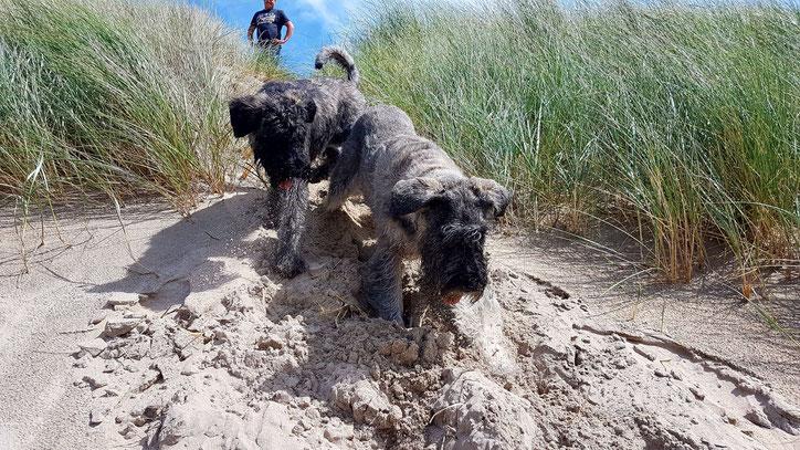 Moeder en dochter in de duinen