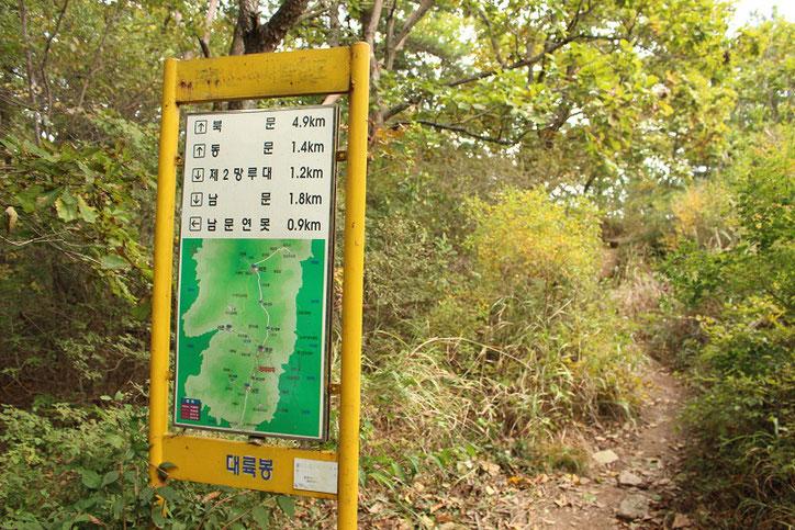 金井山稜線