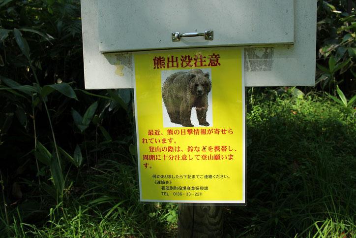 羊蹄山喜茂別熊