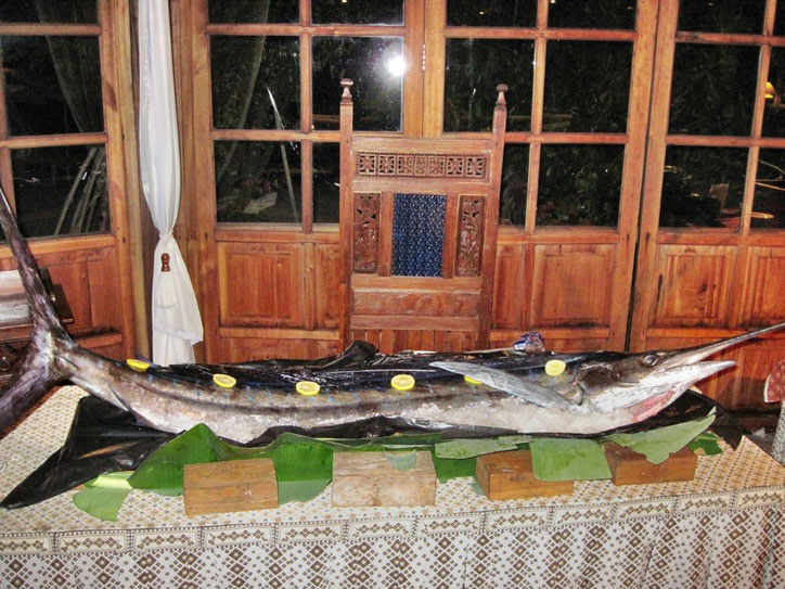 Sashimi vom fangfrischen Blue Marlin