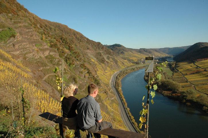 weinanbaugebiete-deutschland-entdecken