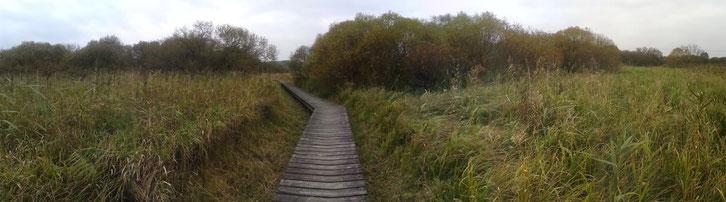Walk of Love_Schottland_Hund_Die Roadies_Reisetagebuch_Wohnmobil