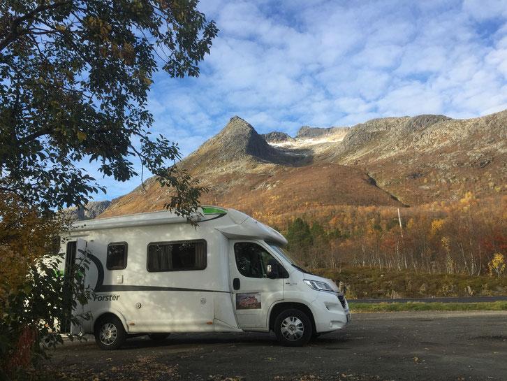 Norwegen_Wohnmobil_Stellplatz_Hund