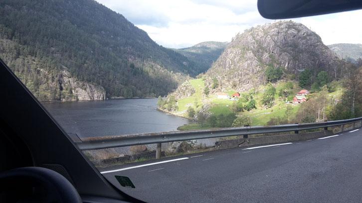 Norwegen_Straße_13_Wohnmobil_Die Roadies_Hund