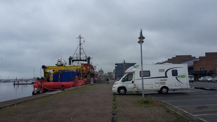 Rostock_Wohnmobil_Campen_Hund_Norwegen