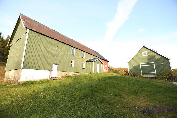 Norwegen_E10_Wohnmobil_Hund_Die Roadies