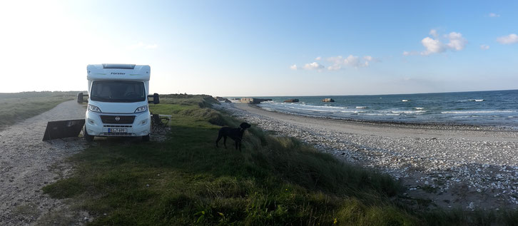 Hund-Camping_Vigsø_Dänemark_Reisetagebuch_Die Roadies