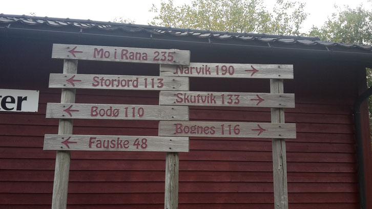 Stellplatz_Wohnmobil_Norwegen_Hund