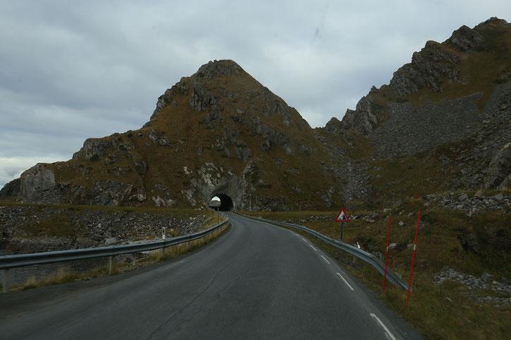 Camping Andenes_Wohnmobil_Hund_Die Roadies_Erfahrungen_Andøya