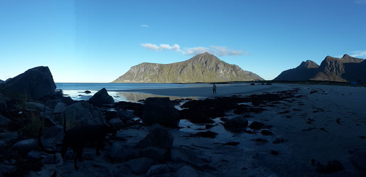 Skagsanden Beach_Lofoten_Norwegen_Wohnmobil_Hund
