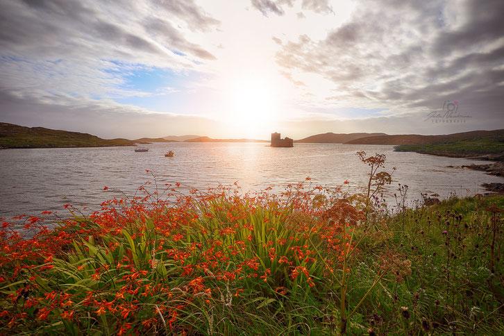 Castle Bay_Isle of Barra_Schottland_Die Roadies_Wohnmobil_Hund_Reisetagebuch