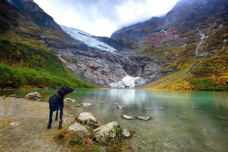 Gletscher_Fjaerland_Norwegen_Reisebericht_Die Roadies