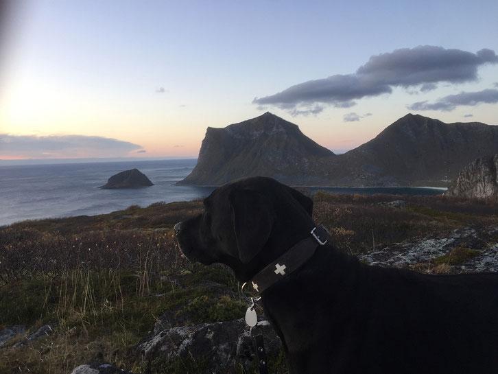 Wanderung_Holandsmelen_Norwegen_Lofoten_Wohnmobil_Hund