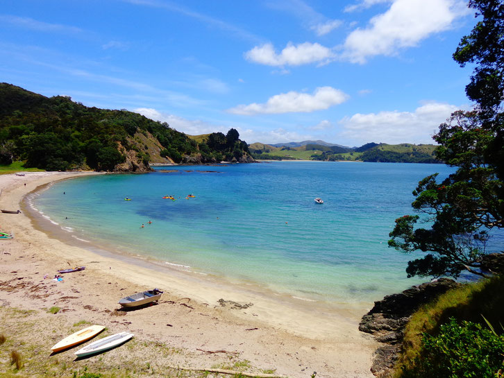 Another one of NZ's beaches! Look at that water!