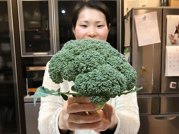 無農薬・有機栽培のブロッコリー