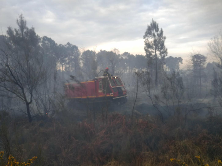 Photographie du feu de forêt d'hier à Hostens