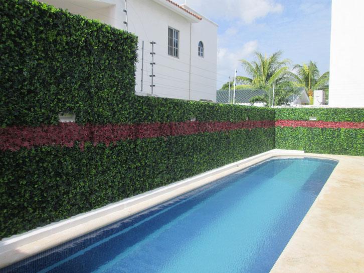Muro verde actual recubrimientos interiores for Diseno de muros verdes