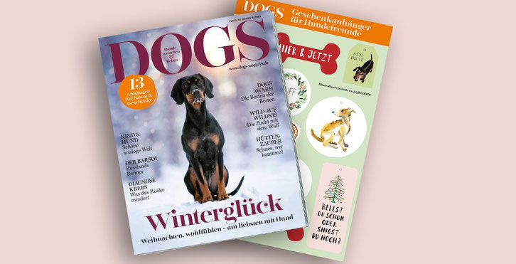 © DOGS - Magazin