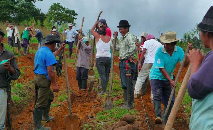 Asociación por la agroecología y el ambiente