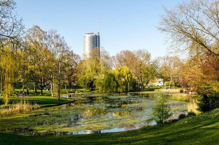 Ein Teich im Stadtpark Essen, umgeben von zahlreichen Bäumen, im Hintergrund ein Hochhaus; Kurtz Detektei Essen