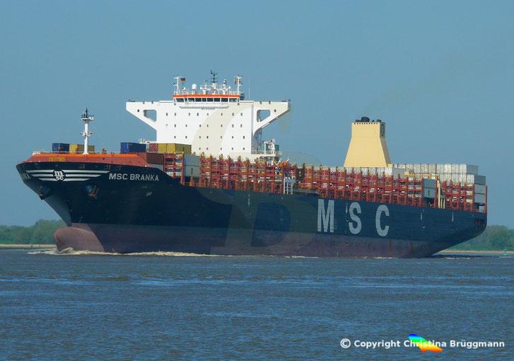 Containerschiff MSC BRANKA, auf der Elbe 14.05.2017