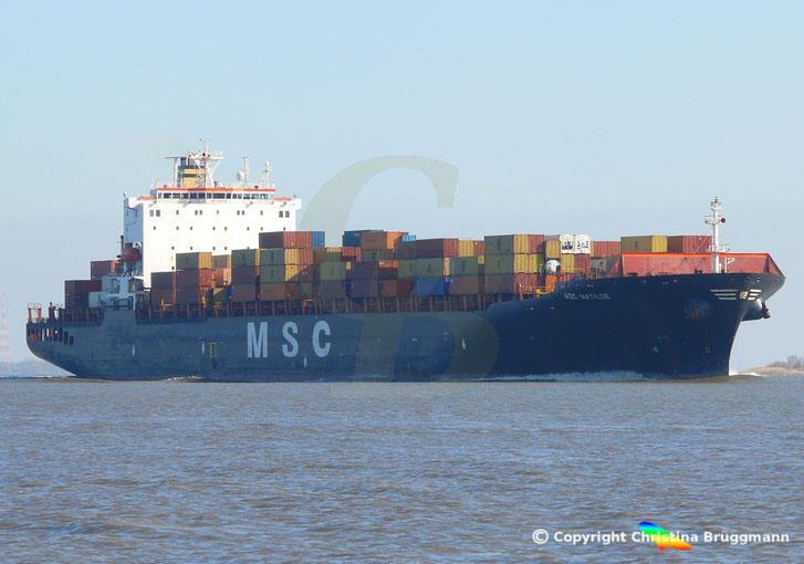 """MSC MADELEINE"""" auf der Elbe 23.04.2015"""