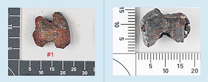 Left: bowtie fragment found in cockpit. Right: bowtie found in captain's body.