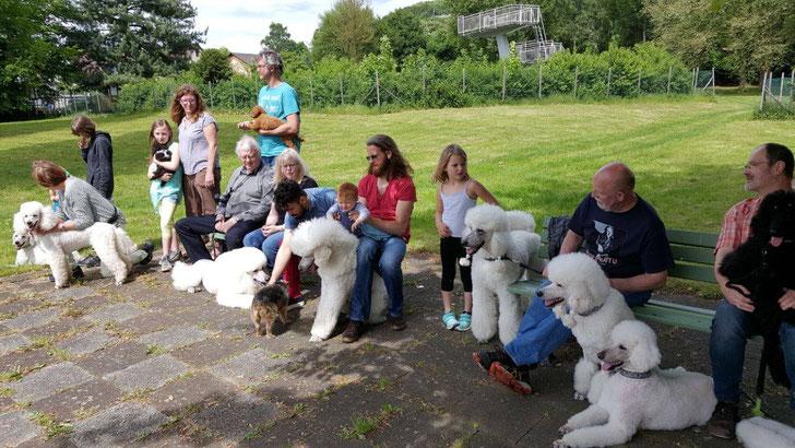 Welpendag in Duitsland met zijn allen weer bij elkaar in Unkel, Duitsland eind mei 2017, weer een gezellige dag gehad met elkaar!